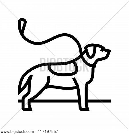 Pouring Out Dog Line Icon Vector. Pouring Out Dog Sign. Isolated Contour Symbol Black Illustration