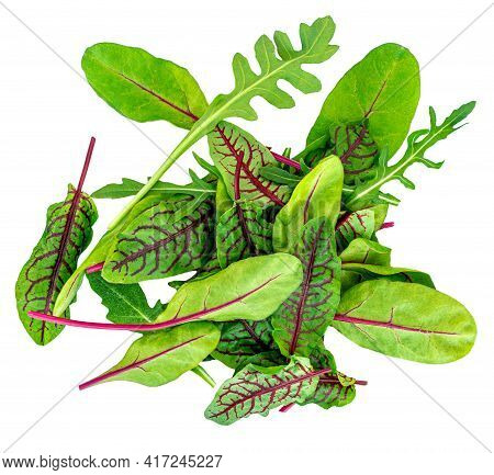 Healthy Salad Leaves Mix Isolated On White Background.  Mixed Salad With Spinach, Chard, Lettuce Top