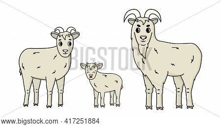 Set Of Cute Funny Vector Doodle Cartoon Farm Goat Family Male Buck, Female With Horns And A Baby Sta