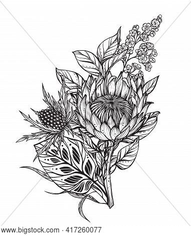Beautiful Vector Composition Of Black And White Flowers, Feverweed, Protea, Isolated On White Backgr