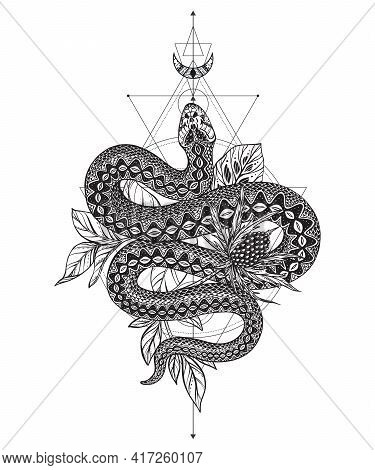 Vector Illustration Of Black And White Snake, Feverweed Flower, Moon, Sacral Geometric Simbols Isola