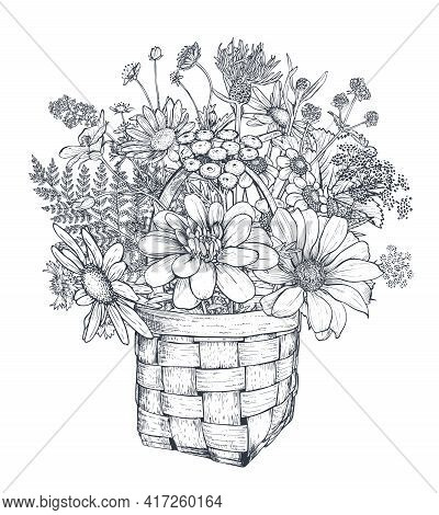 Vector Floral Composition With Black And White Hand Drawn Herbs And Wildflowers