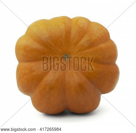 Thanksgiving Day. Autumn Harvest Of Fruits And Vegetables. Pumpkin On White Background.autumn Time.h