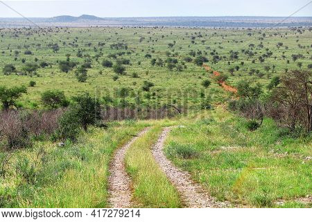 Gravel Road In A Green African Savanna