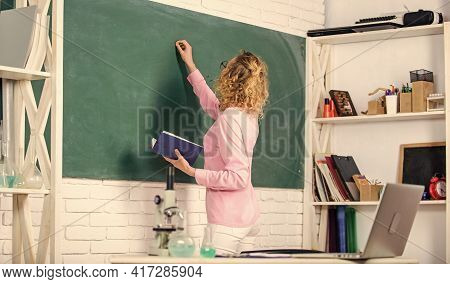 Educational Program For Primary School. Girl Adorable Teacher In Classroom. Structure Educational Sy