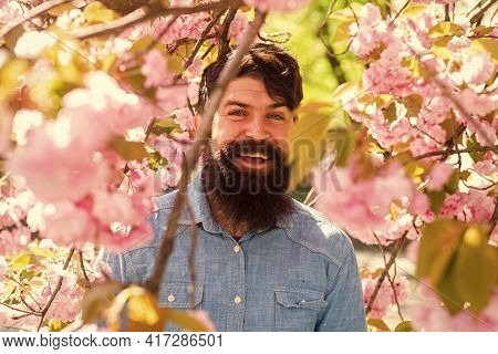 Pink Tender Bloom. Weekend In Garden Concept. Lot Of Flowers Surrounding Guy. Hiding In Bloom. Hands