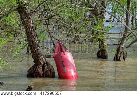 Red Buoy Floats Up Against A Tree Along The Shore Of Flooded Mississippi River In Uptown New Orleans