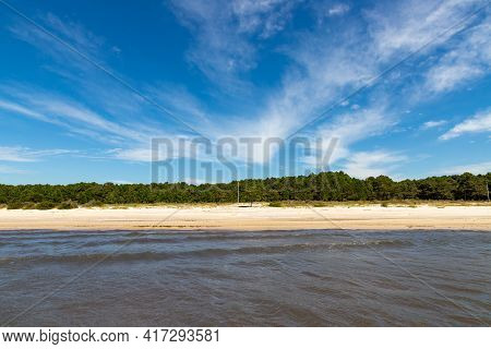 Sand, Trees And Lake With Blue Sky