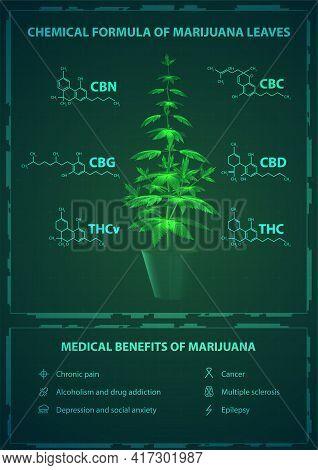 Medical Benefits And Chemical Formulas Of Marijuana, Green Poster With Digital Marijuana Bush With C