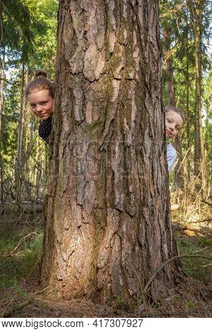 Happy Carefree Kids. Older Sister And Younger Brother Together Peek Out From Behind Large Tree In Fo