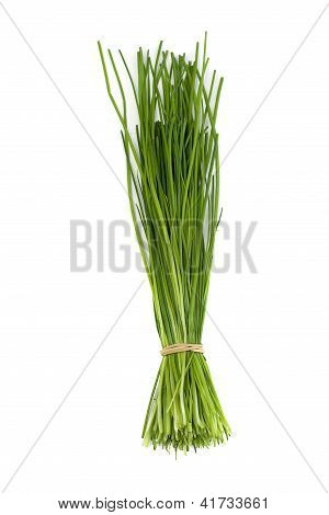 Bunch Of Onion Chives On White Background