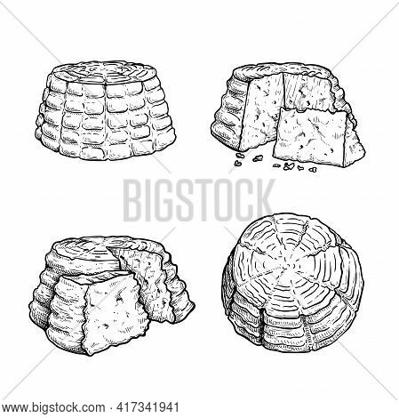 Italian Cheese Ricotta Set. Hand Drawn Sketch Style Drawings. Traditional Italian  Cheese Collection