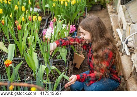 Happy Teen Girl Florist Planting Pot Plants In Greenhouse, Summer