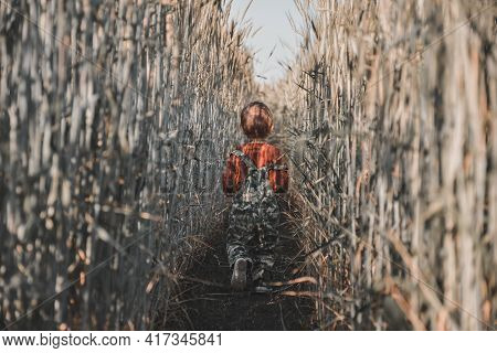 A Small Child In A Wheat Field Stands With His Back To The Viewer. Little Child Walks In A Wheat Fie