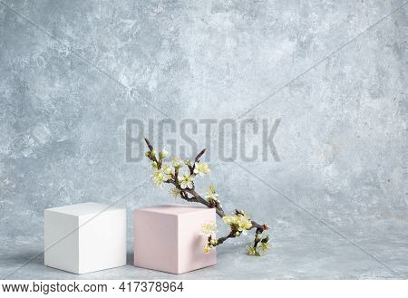 Cosmetic Background With Geometric Shapes. Two Cubes And A Blossoming Branch Of A Cherry On A Gray A