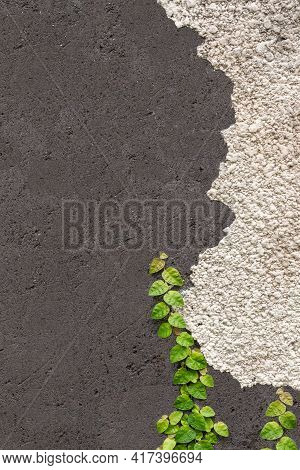 Black And White Wall With A Green Leaves. Plaster, Concrete Background.