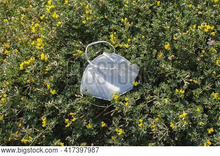 Disposable Protective Face Mask Discarded On Marine Plants Habitat, Medical Covid19 Pandemic Sea Pol