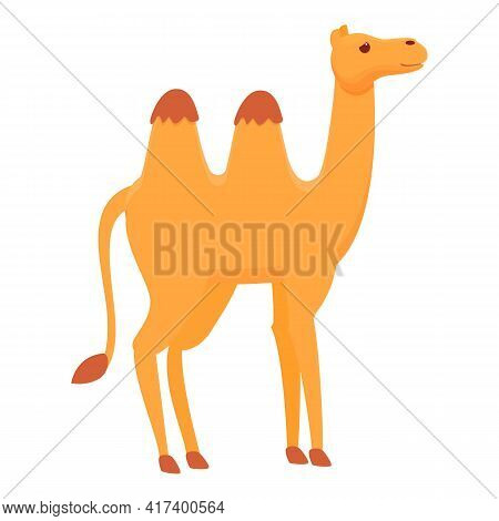 Mammal Camel Icon. Cartoon Of Mammal Camel Vector Icon For Web Design Isolated On White Background