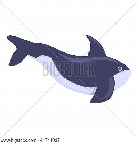 Killer Whale Aqua Icon. Cartoon Of Killer Whale Aqua Vector Icon For Web Design Isolated On White Ba