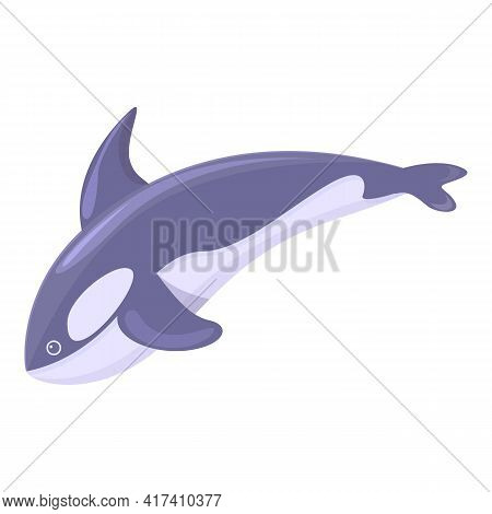 Aquatic Killer Whale Icon. Cartoon Of Aquatic Killer Whale Vector Icon For Web Design Isolated On Wh