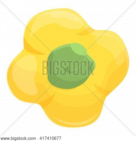 Top View Paprica Icon. Cartoon Of Top View Paprica Vector Icon For Web Design Isolated On White Back