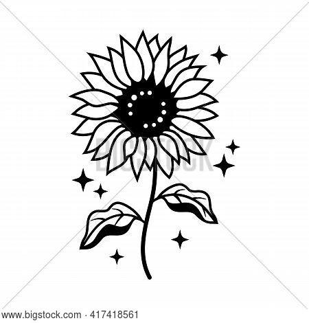 Hand Drawn Sunflower Thin Line Icon, Sunflower Farmhouse Style, Sunflower Vector Illustration