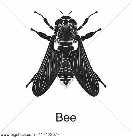 Bee Vector Black Icon. Vector Illustration Pest Insect Bee On White Background. Isolated Black Illus