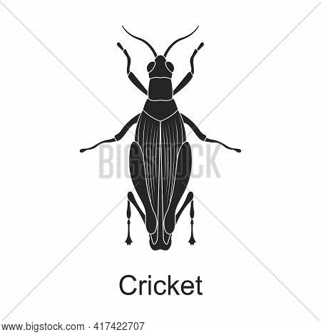 Cricket Vector Black Icon. Vector Illustration Pest Insect Cricket On White Background. Isolated Bla