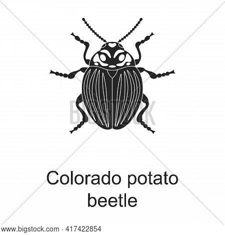 Colorado Potato Beetle Vector Black Icon. Vector Illustration Pest Insect Colorado Beeatle On White