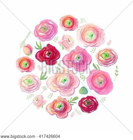 Round Template With Fresh Red And Pink Ranunculus. Circle With Pink And Red Flowers. Pretty Illustra