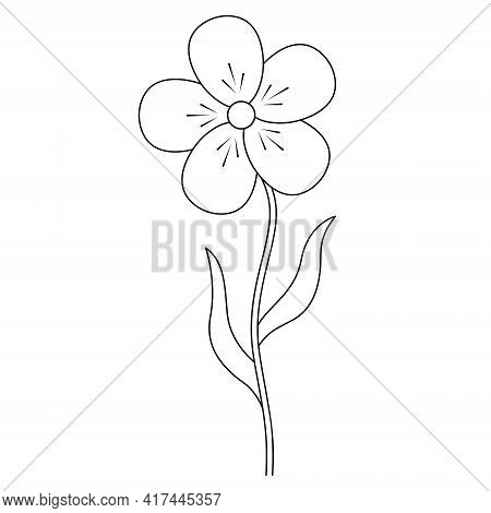Flower. Sketch. A Blossoming Bud. Flowering Plant. Vector Illustration. Leaf On Stem. Coloring Book