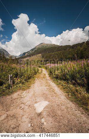 Trekking Of High Tatras