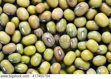 Bean Mung Agriculture Green Seeds Closeup Food Texture Background. Mung Bean Known As Green Gram, Ma