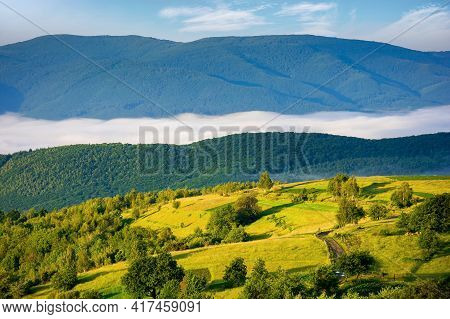 Rural Landscape In The Morning. Mist In The Distant Valley. Trees And Fields On The Hill In Morning