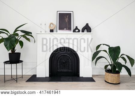 Houseplants And Home Decor In Room With Modern Fireplace. Green Plants In Wicker Basket Standing In