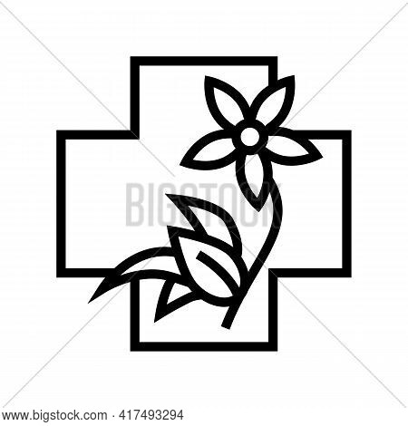 Flower Natural Homeopathy Medicine Line Icon Vector. Flower Natural Homeopathy Medicine Sign. Isolat