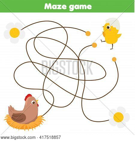 Maze Puzzle. Help Chicken Find Mother Hen. Activity For Toddlers. Educational Children Game. Animals