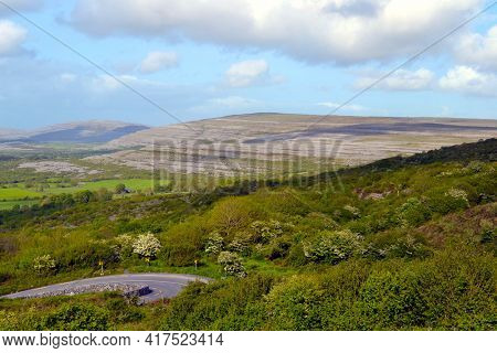 The Burren, meaning a rocky place, is a region of County Clare in the southwest of Ireland.