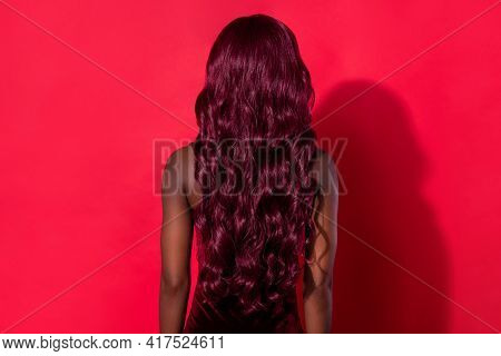 Rear Back View Photo Of Young African Woman Incognito Anonym Hairdo Isolated Over Red Color Backgrou