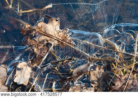 Close-up Of Yellow Leaves In Frozen Water. Ice With A Pattern. Beautiful Autumn Concept. Natural Nat