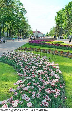 Chernihiv - Ukraine. 10 May 2020: Spring Park With Blooming Flower Bed. People Walk In City Park In