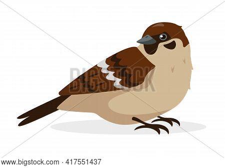 Sparrow Bird Icon Isolated On White Background.