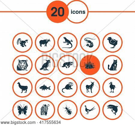 Zoo Icons Set With Lizard, Butterfly, Lemur And Other Gull Elements. Isolated Vector Illustration Zo