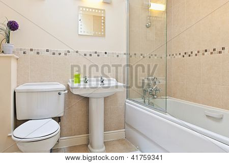 Shot of a Modern Bathroom with Shower