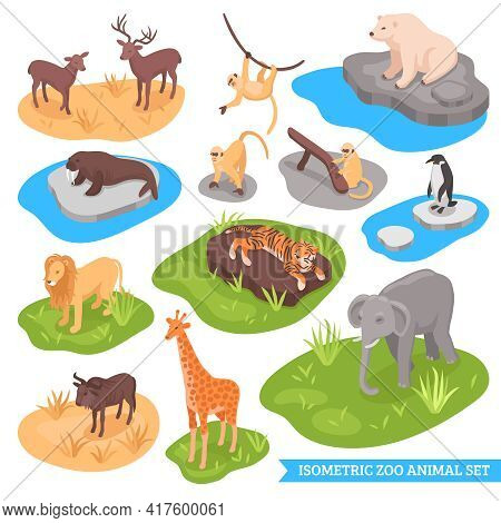 Isometric Zoo Decorative Icons Set Of Animals Living In African Arctic And Asian Wilderness Isolated
