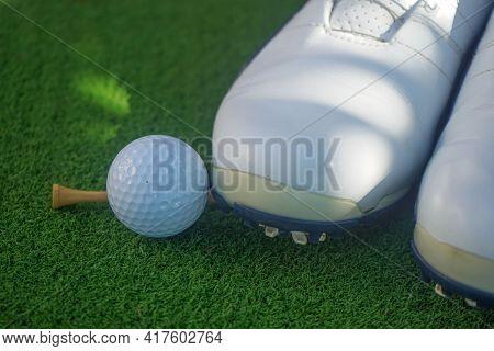 Closeup Golf Ball On Green Ready To Be Shot. Golf Ball On Green In The Evening Golf Course With Suns