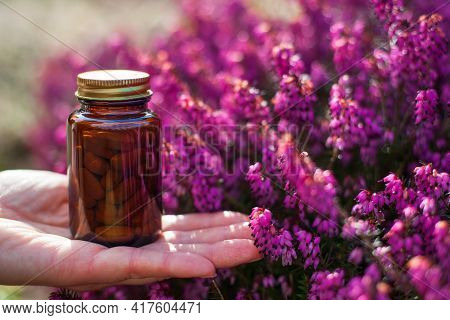 Herbal Medicine, Phytotherapy - Pink Heaths Flower And Herbal Tablets. Pills In Brown Glass.