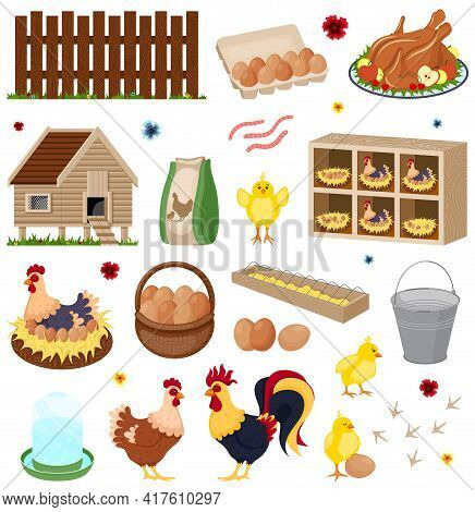 Poultry Farm Elements Set. Chicken Coop And Hays On White Background. Chicken Coop Hen Chicks