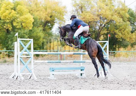 Young Man Jumps A Horse On Show Jumping Event