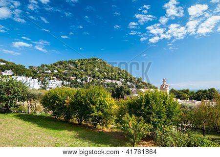 Picturesque Landscape.
